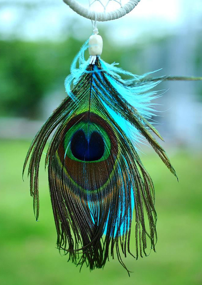 Peacock Feather Dream Catcher Hanging Decoration Fairyseason