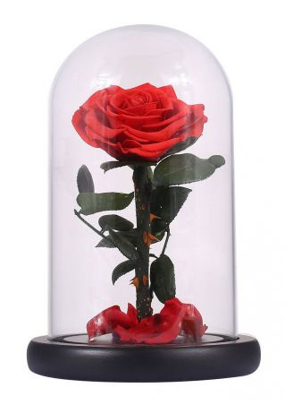 Glass Bottle Preserved Eternal Rose
