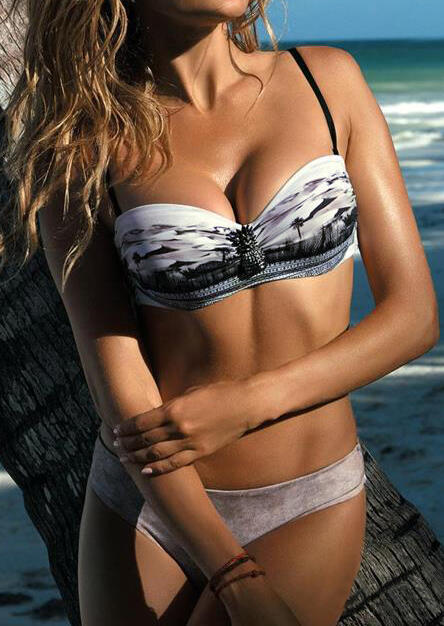Pineapple Coconut Tree Bikini Set - Gray