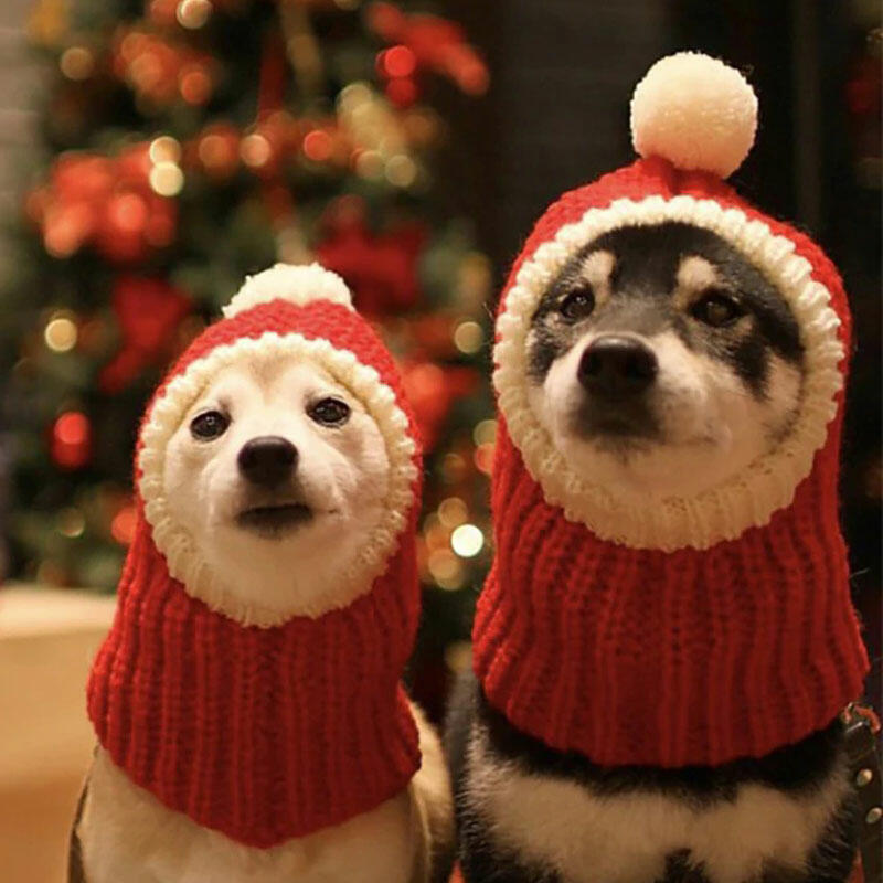 Winter Warm Knitted Puppy Dog Cat Santa Hat