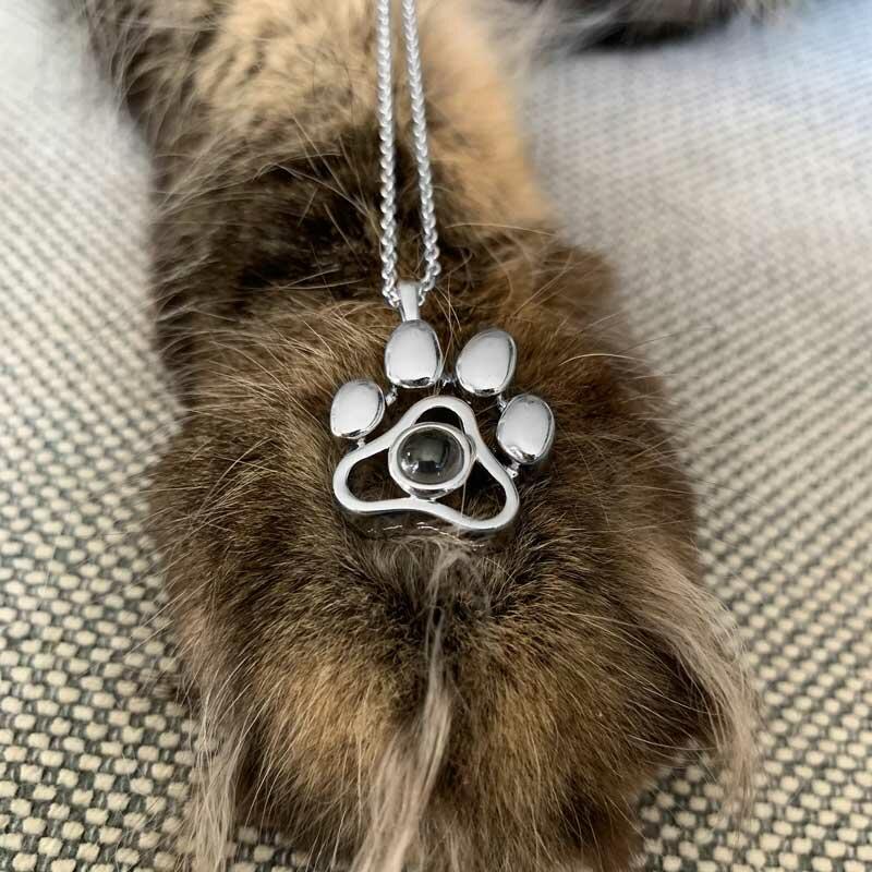 Pet Paw Alloy Pendant Necklace