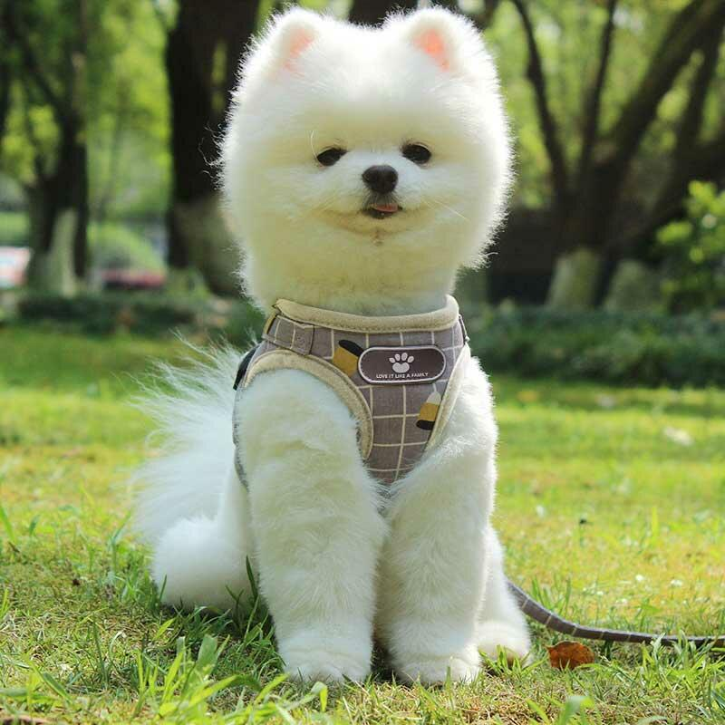 Plaid Mesh Padded Adjustable Reflective Pet Dog Cat Vest Harness