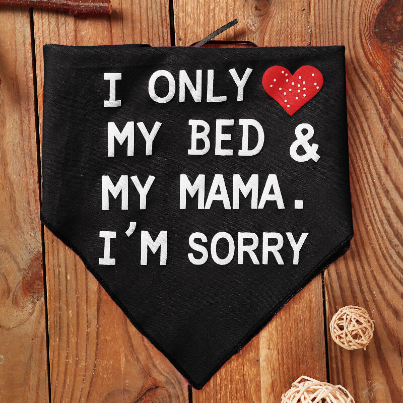 I Only Love My Bed And My Mama Pet Dog Collar Scarf