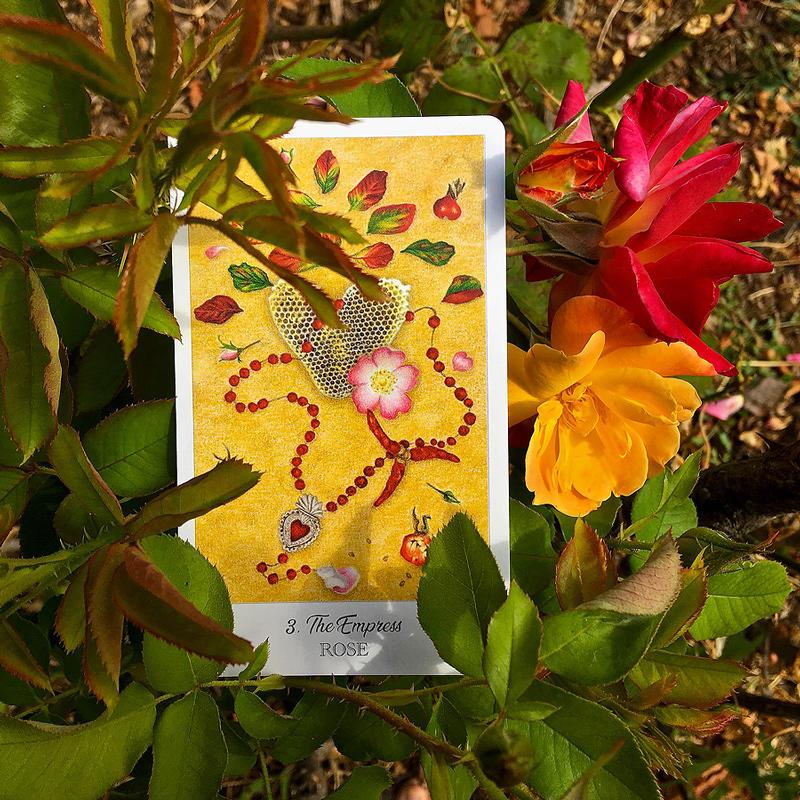 The Herbcrafter's Tarot Deck